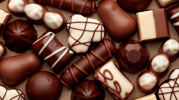 The Toronto Chocolate Festival starts this week