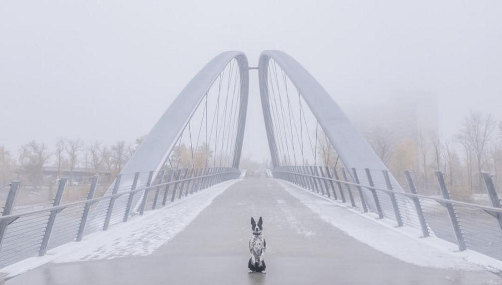 Best Calgary Instagram Photos: October 3 to 10