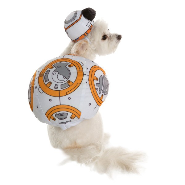 BB-8 costume from PetSmart.