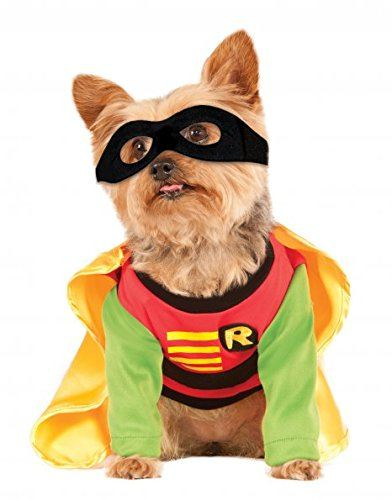 Robin costume from Amazon.ca