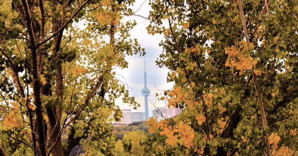 5 things to do in Toronto: Monday, October 17