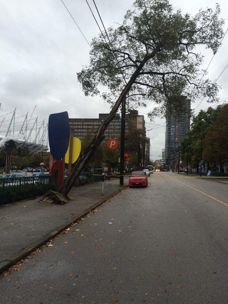CMBC/Trolley Overhead photo