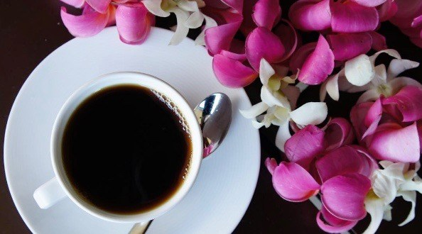 Honolulu Coffee expands with 2 new Vancouver locations