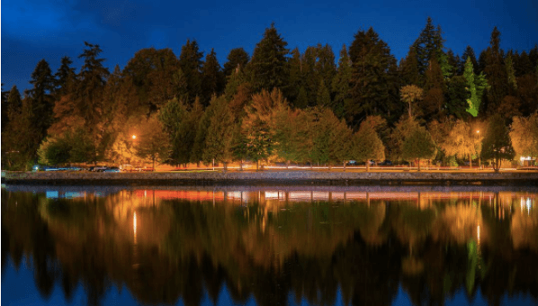 27 photos of fall leaves and colours in Stanley Park
