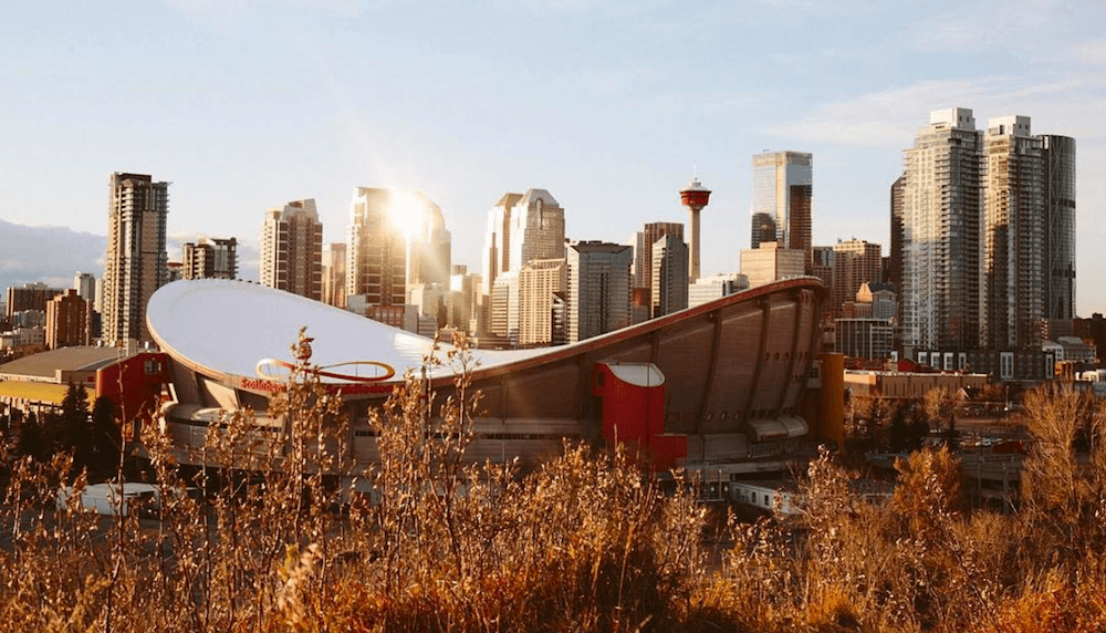 49 things to do in Calgary this November