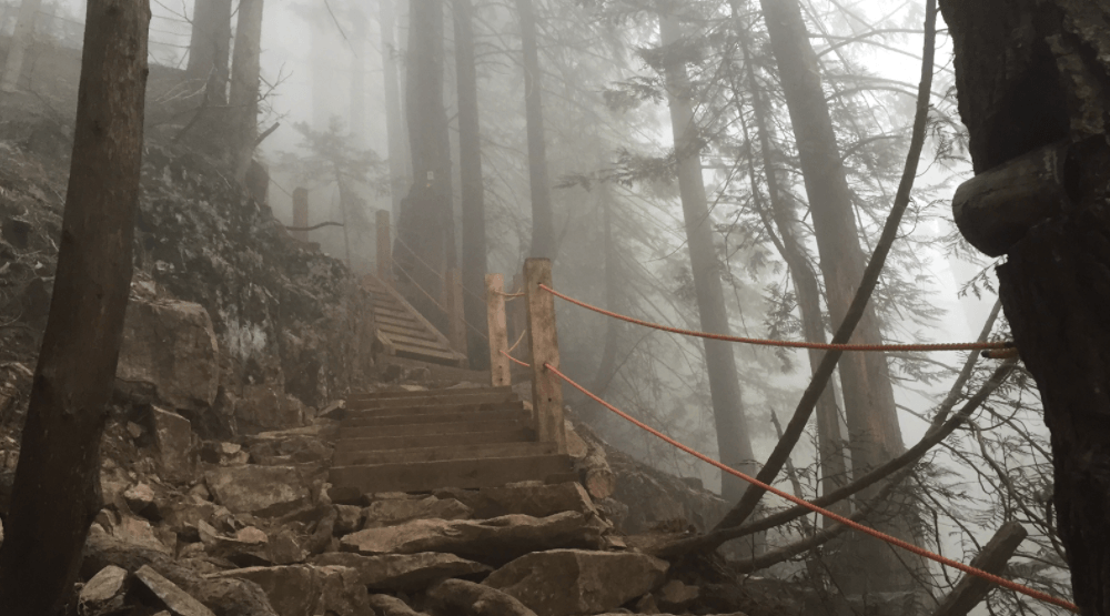 The Grouse Grind's top climber has completed the hike 801 times this year