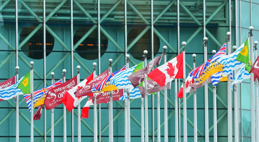 Plaza flags