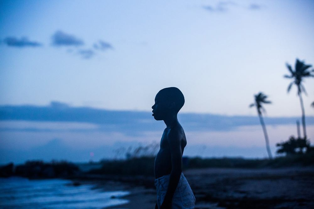 Film Review: Moonlight - Dan Nicholls, Daily Hive