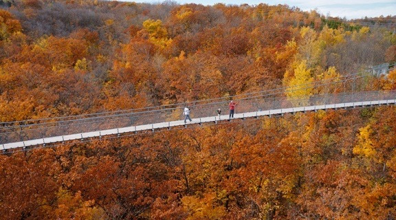 The longest suspension footbridge in Southern Ontario is only two hours from Toronto (PHOTOS)