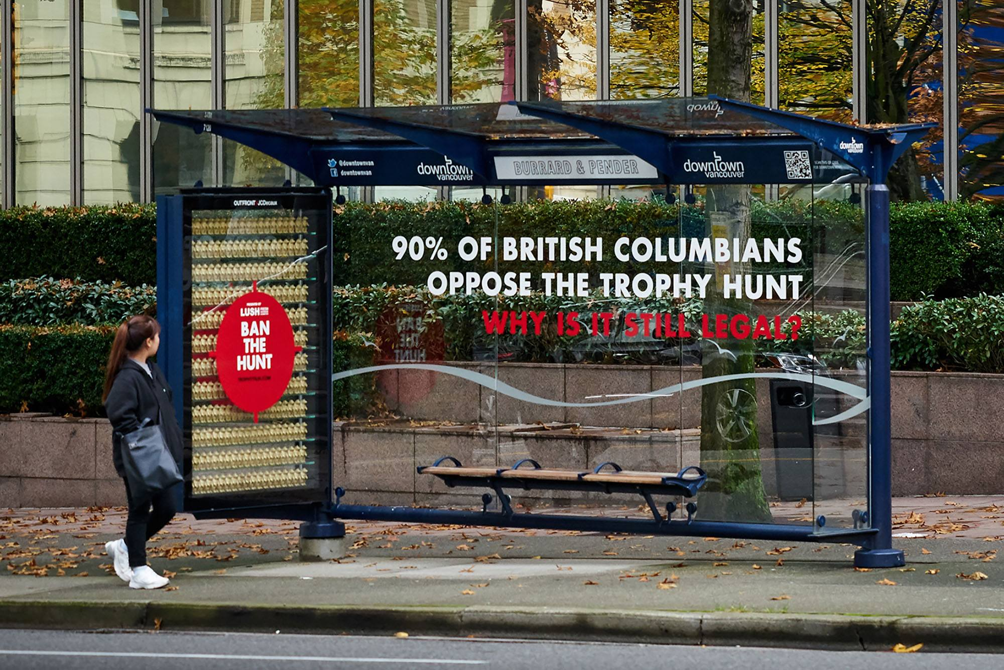 Lush has turned a bus shelter at West Pender and Burrard in Vancouver into a memorial to the grizzlies killed in the trophy hunt. (Lush Cosmetics)