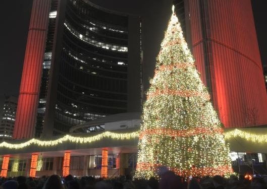 Toronto's Christmas tree arrives at Nathan Phillips Square this ...