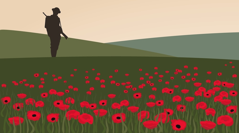 Flanders fields poppies remembrance day