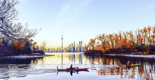 5 things to do in Toronto today: Tuesday, November 8