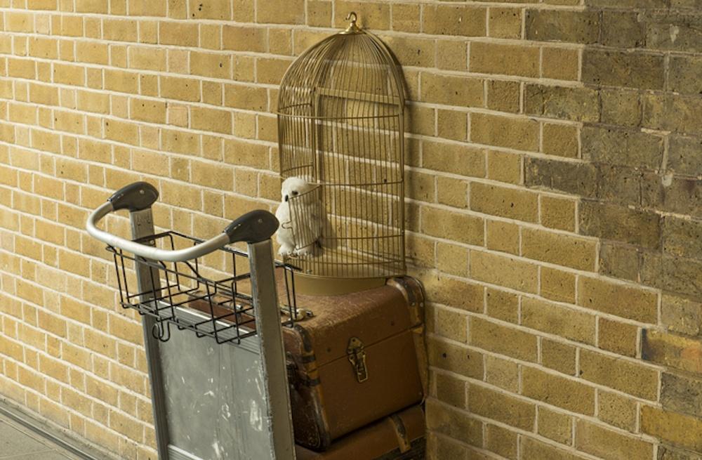 All aboard the Hogwarts Express: Visit platform 9 3/4's selfie stop at North Hill Center