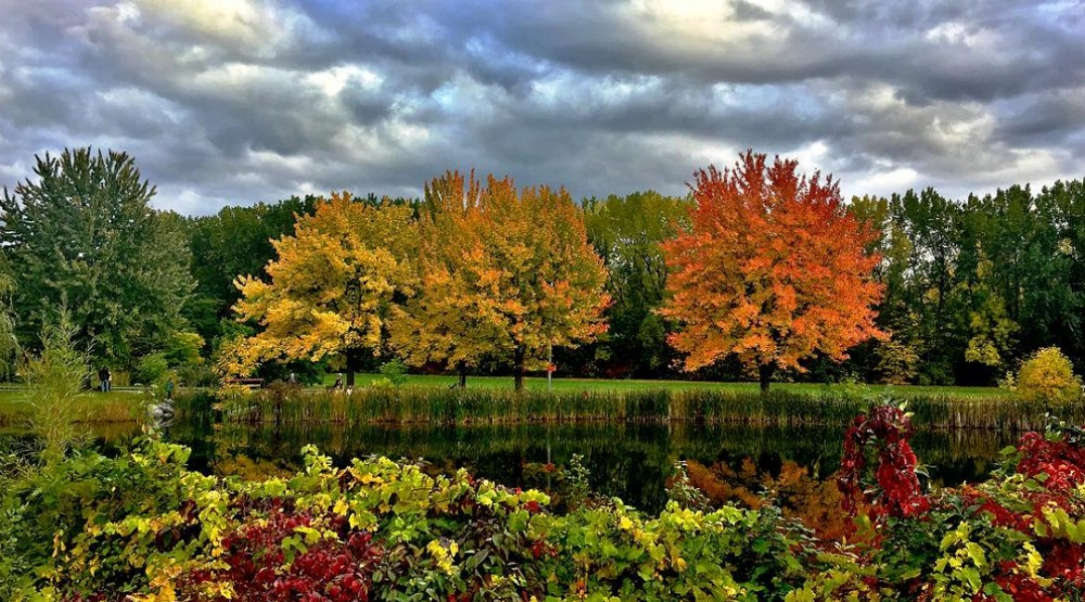 25 pictures that show how beautiful fall is in Montreal