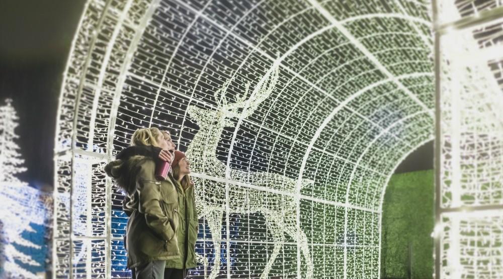 26 photos of Vancouver's Enchant Christmas Light Maze (PHOTOS)