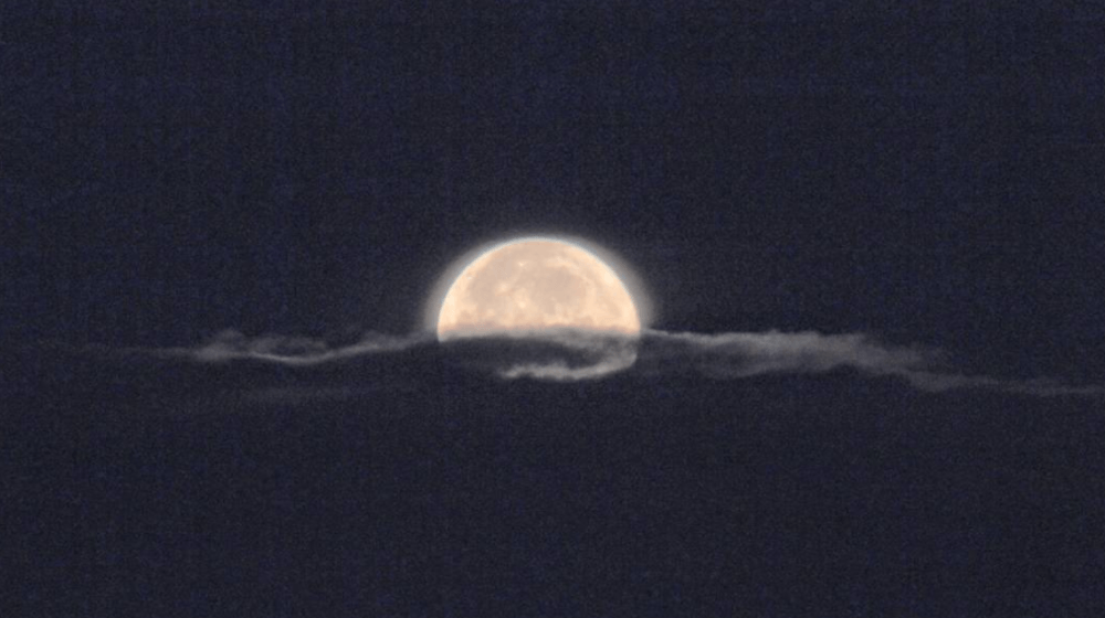 13 photos of last night's supermoon over Calgary