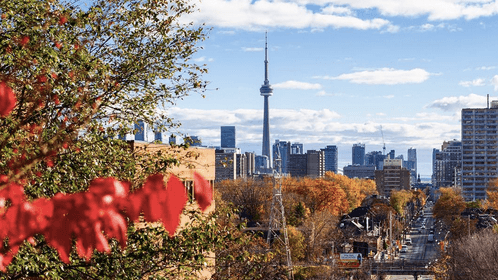 5 things to do in Toronto today: Wednesday, November 16