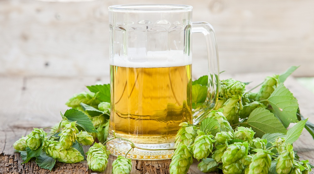 Beer and hops shutterstock