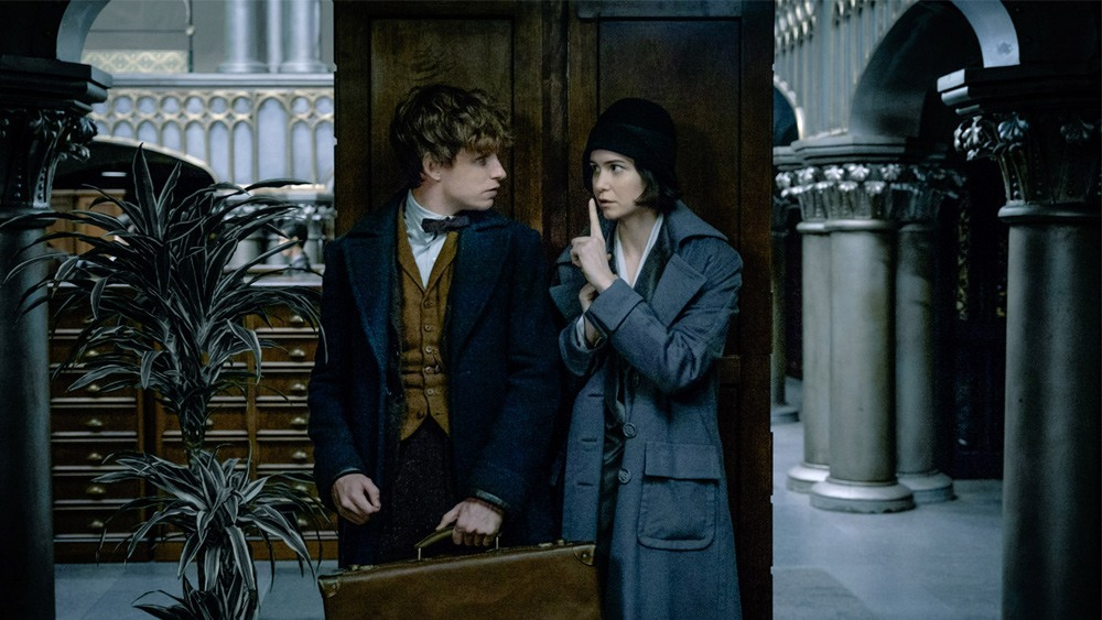 Fantastic Beasts and Where to Find Them Movie Review Dan Nicholls Daily Hive
