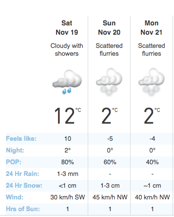 Toronto Weather Snow
