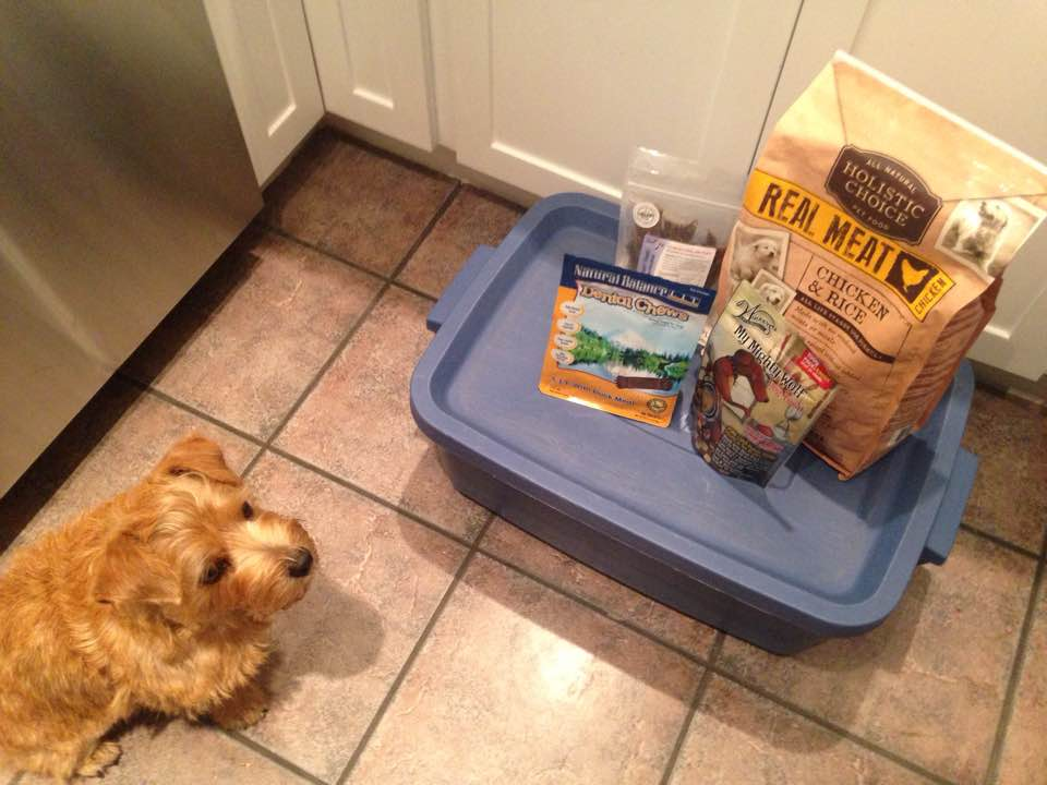 My first pet food delivery from SPUD.