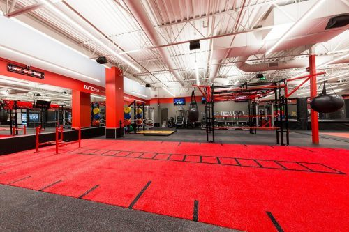 Coquitlam's new gym is bringing the ultimate back into fitness