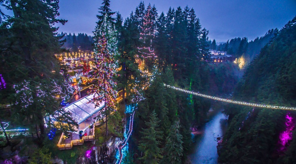 Canyon Lights (Capilano Suspension Bridge)