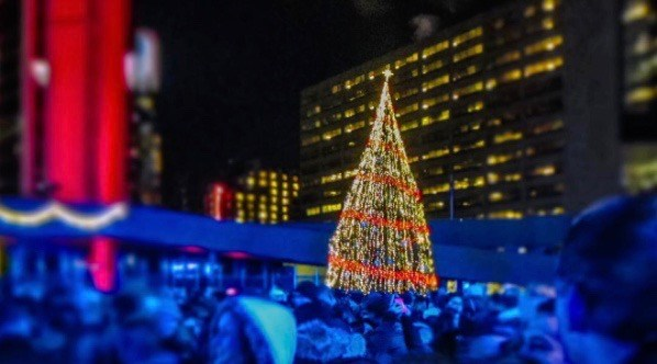 Toronto's official Christmas tree will be lit for the first time tomorrow night