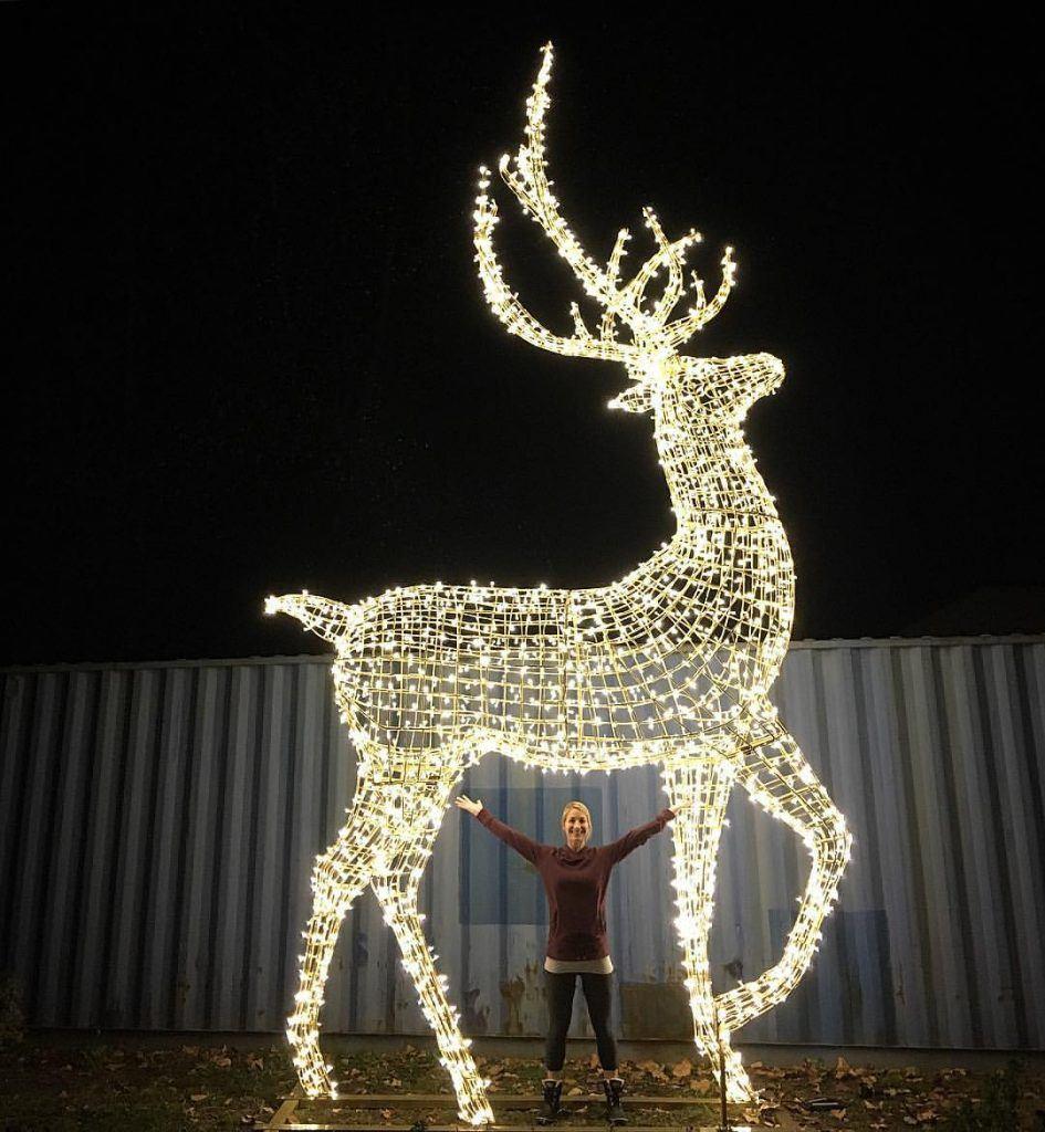 image enchant christmas - Deer Christmas Lights