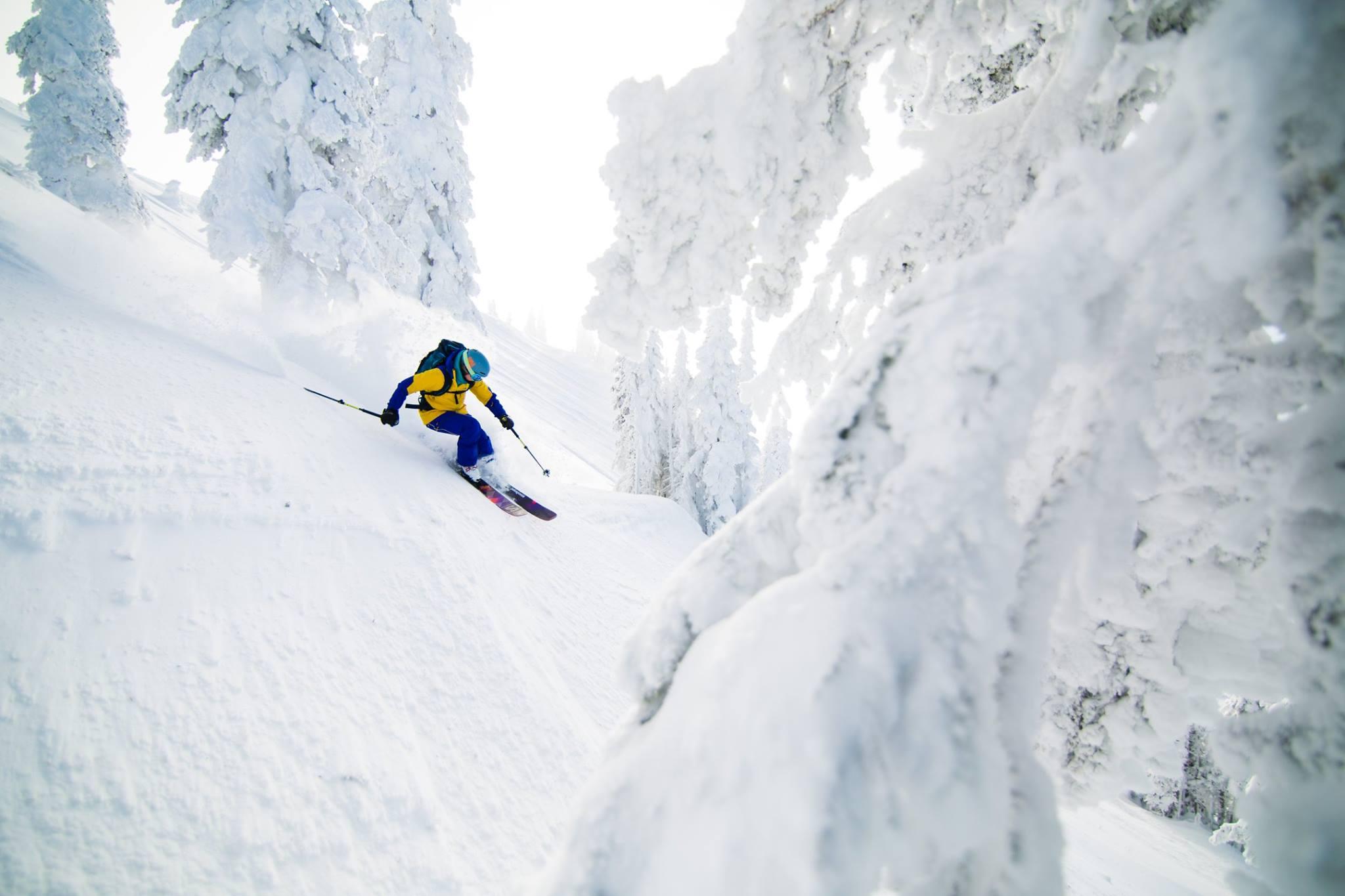 Skier Leah Evans in Revelstoke (Zoya Lynch/Revelstoke Mountain Resort/Facebook)