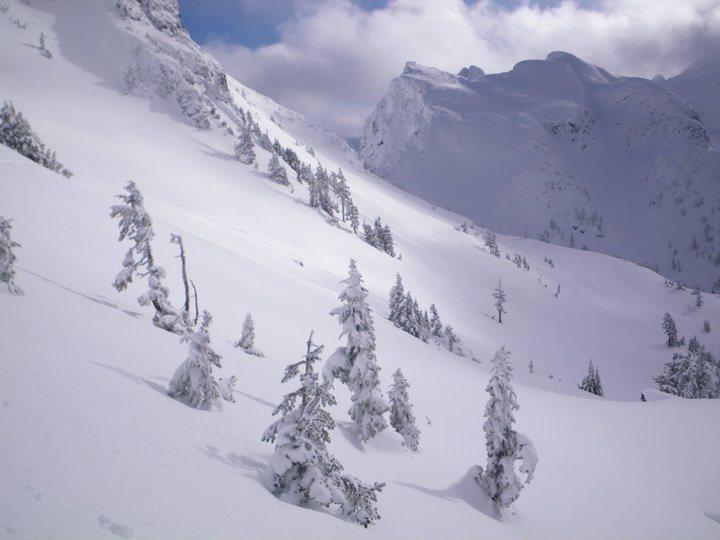 (Mount Cain Alpine Park/Facebook)