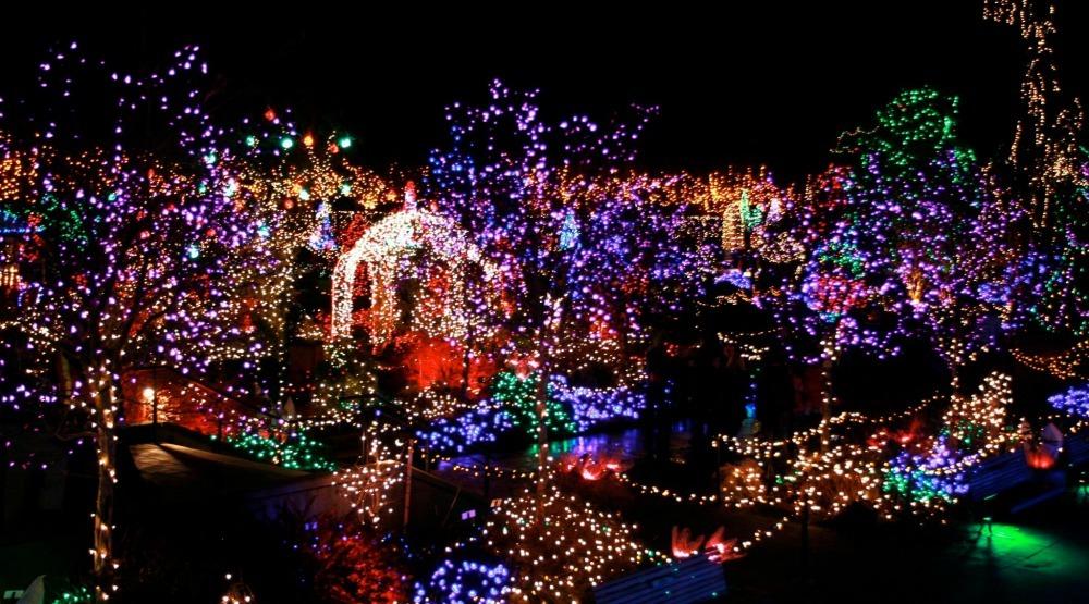 VanDusen Festival of Lights to return this holiday season