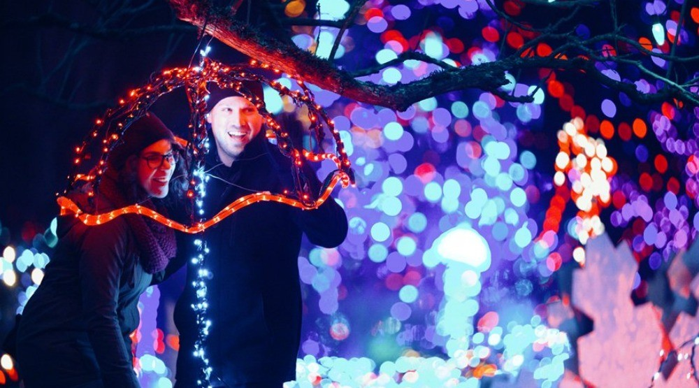 10 experiences you need to try at VanDusen Festival of Lights