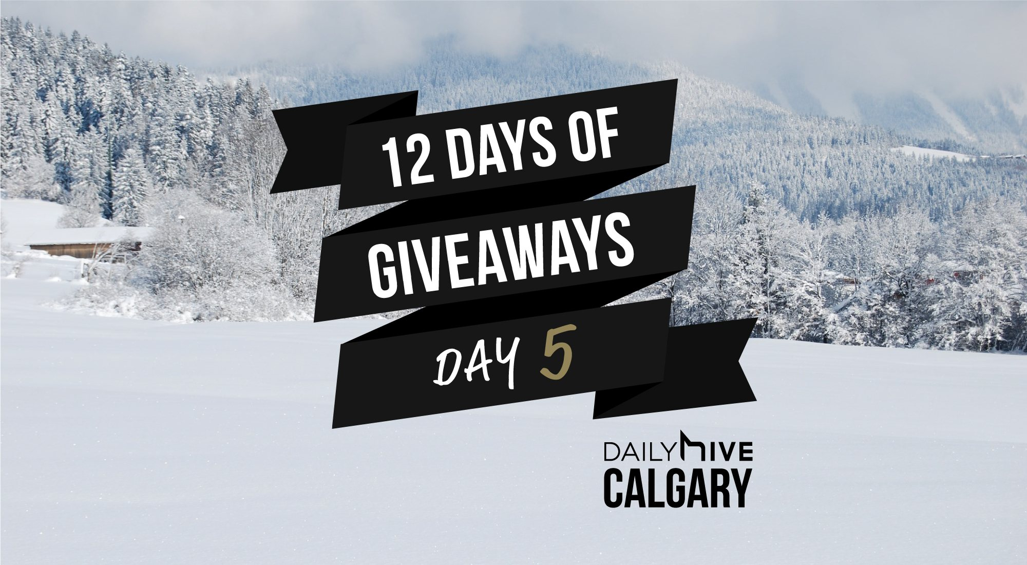 12 days of giveaways calgary 5