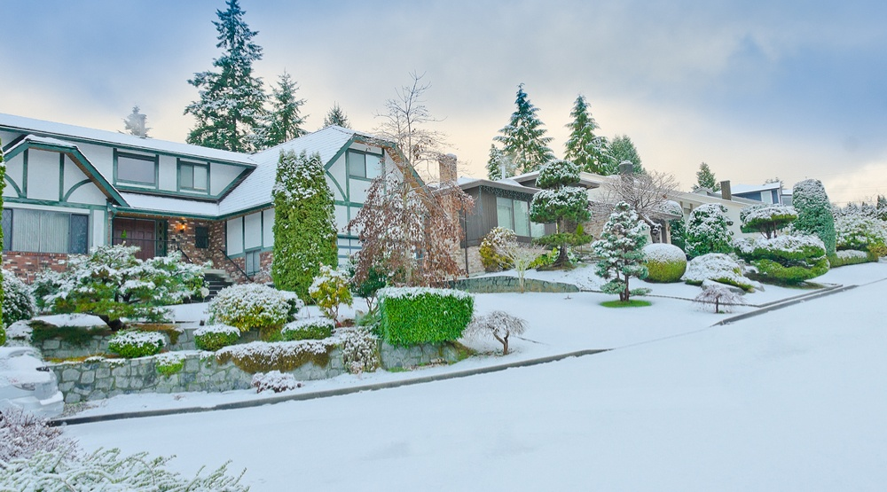 5 thing to do when there's snow in Vancouver