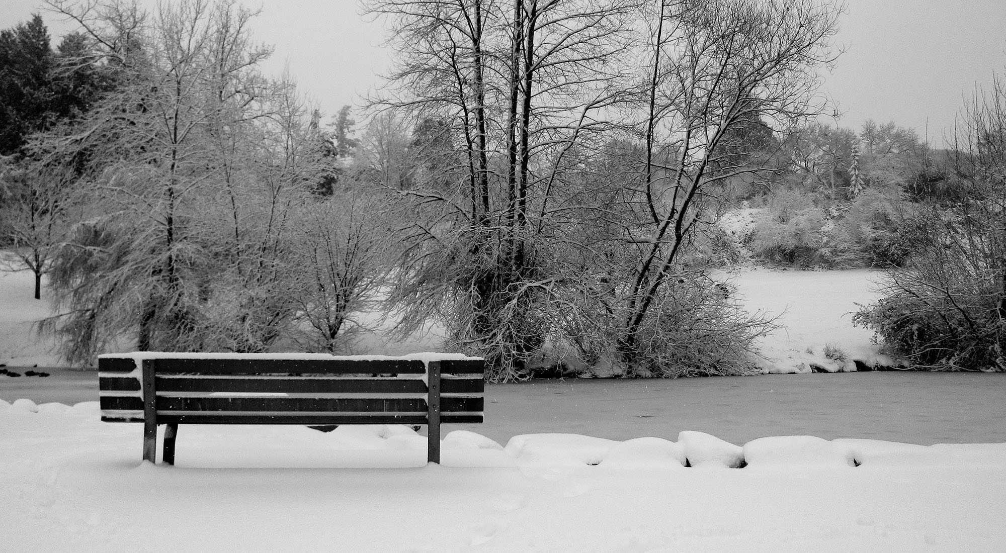 Snow in Queen Elizabeth Park (Olga Zamudio/Flickr)