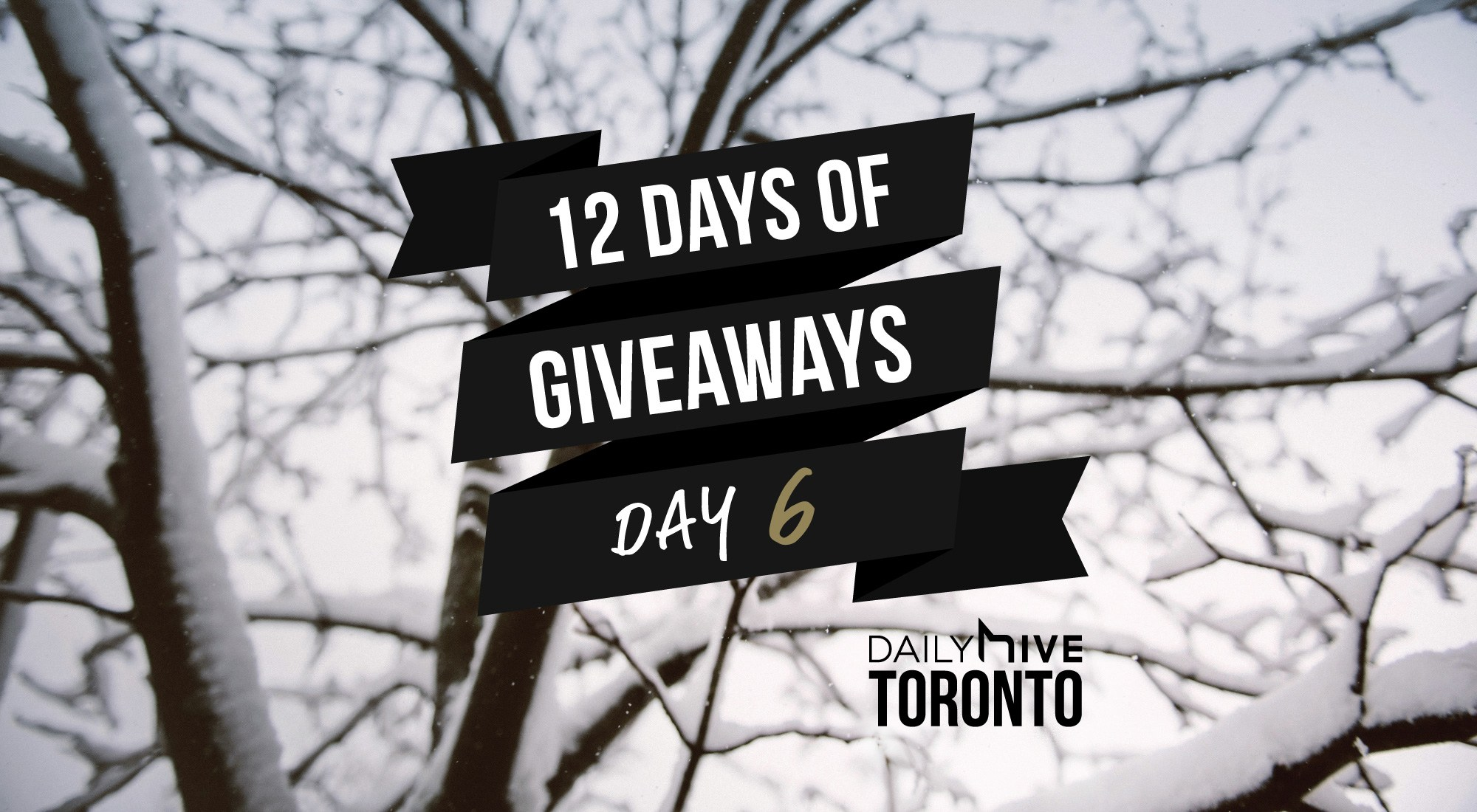 12 days of giveaways toronto 61
