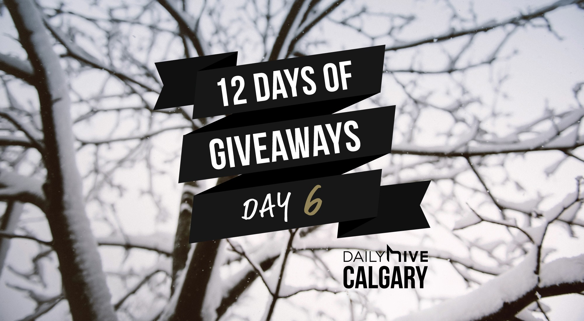 12 days of giveaways calgary 61
