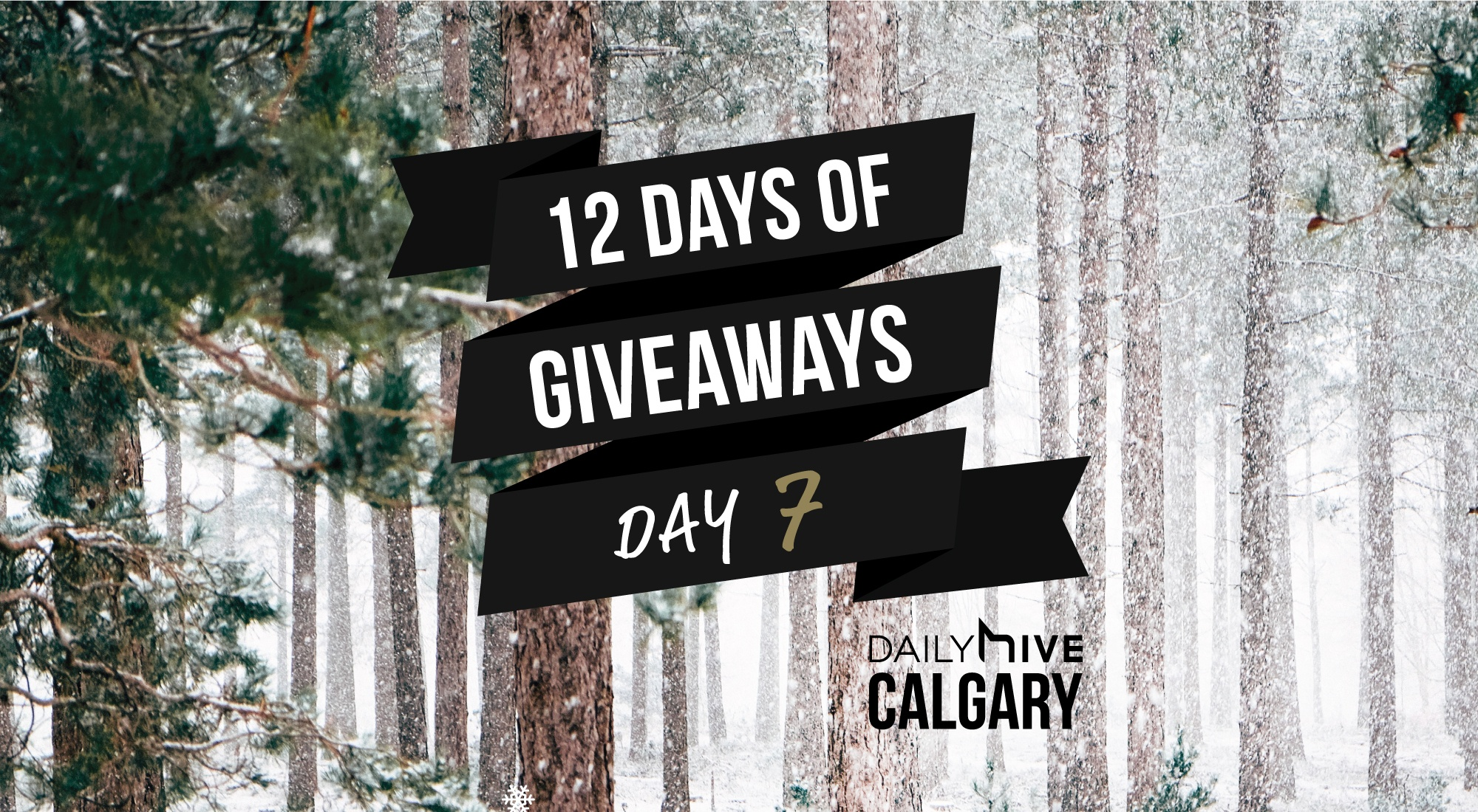 12 days of giveaways calgary 7
