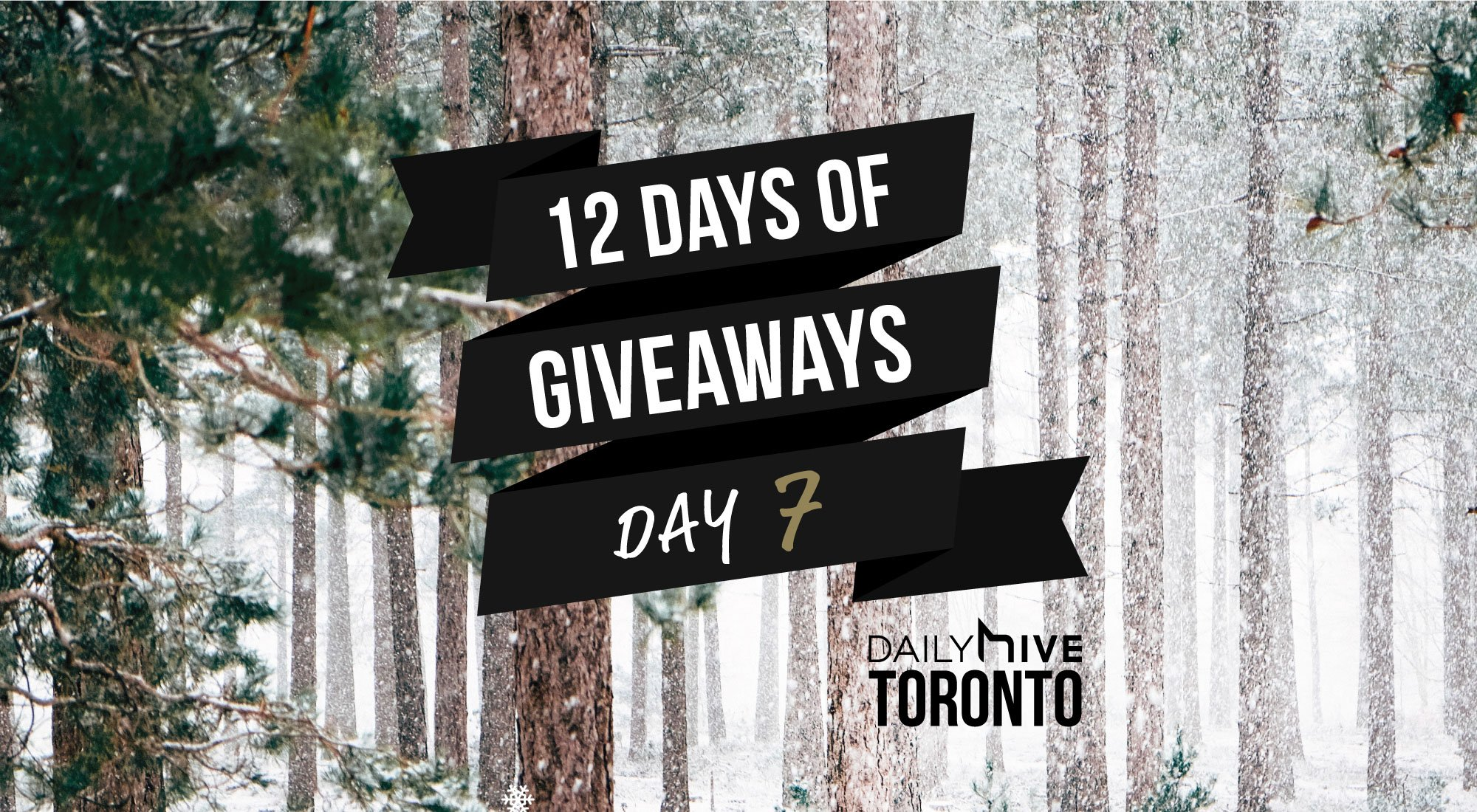 12 days of giveaways toronto 7