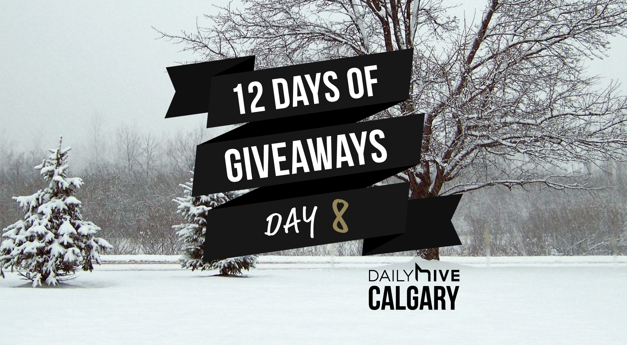 12 days of giveaways calgary 8