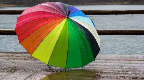 Umbrella / Shutterstock