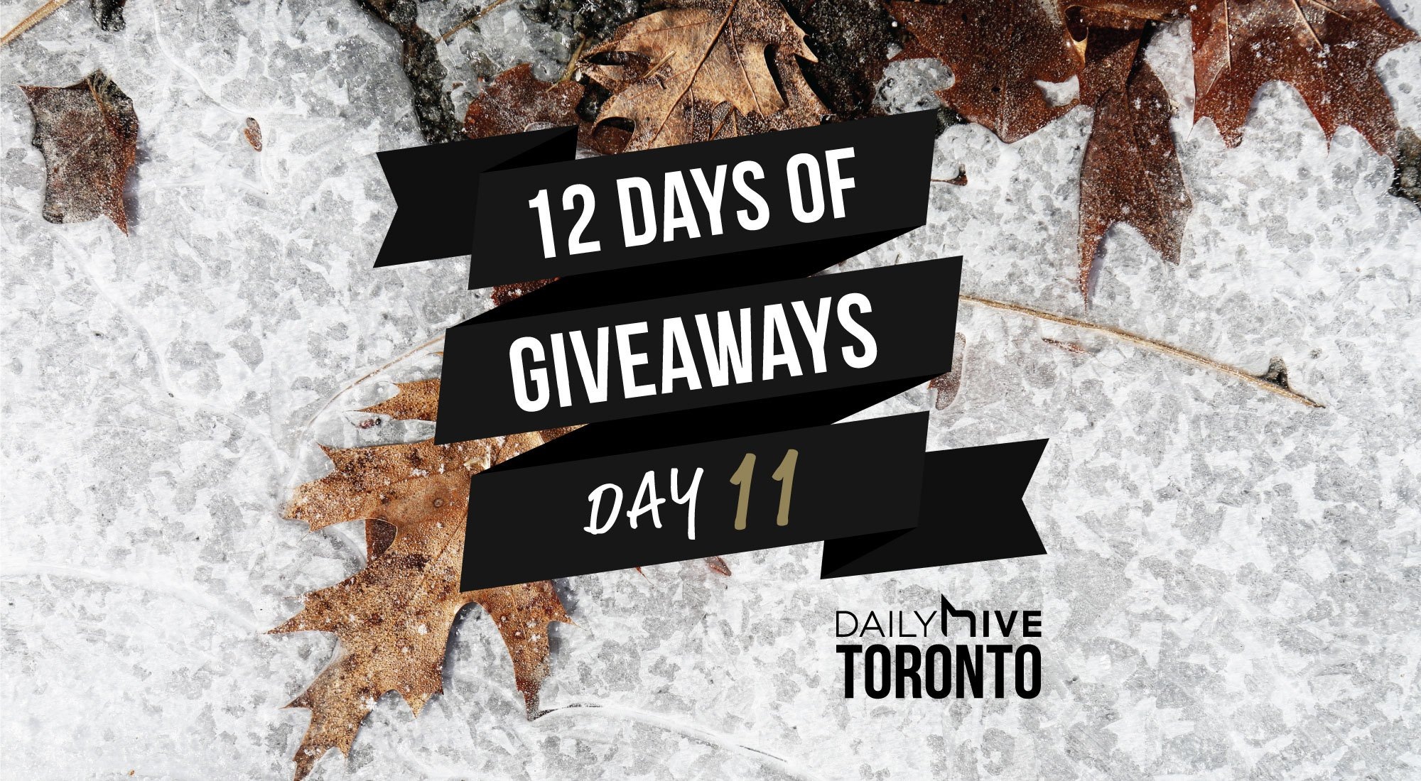 12 days of giveaways toronto 11