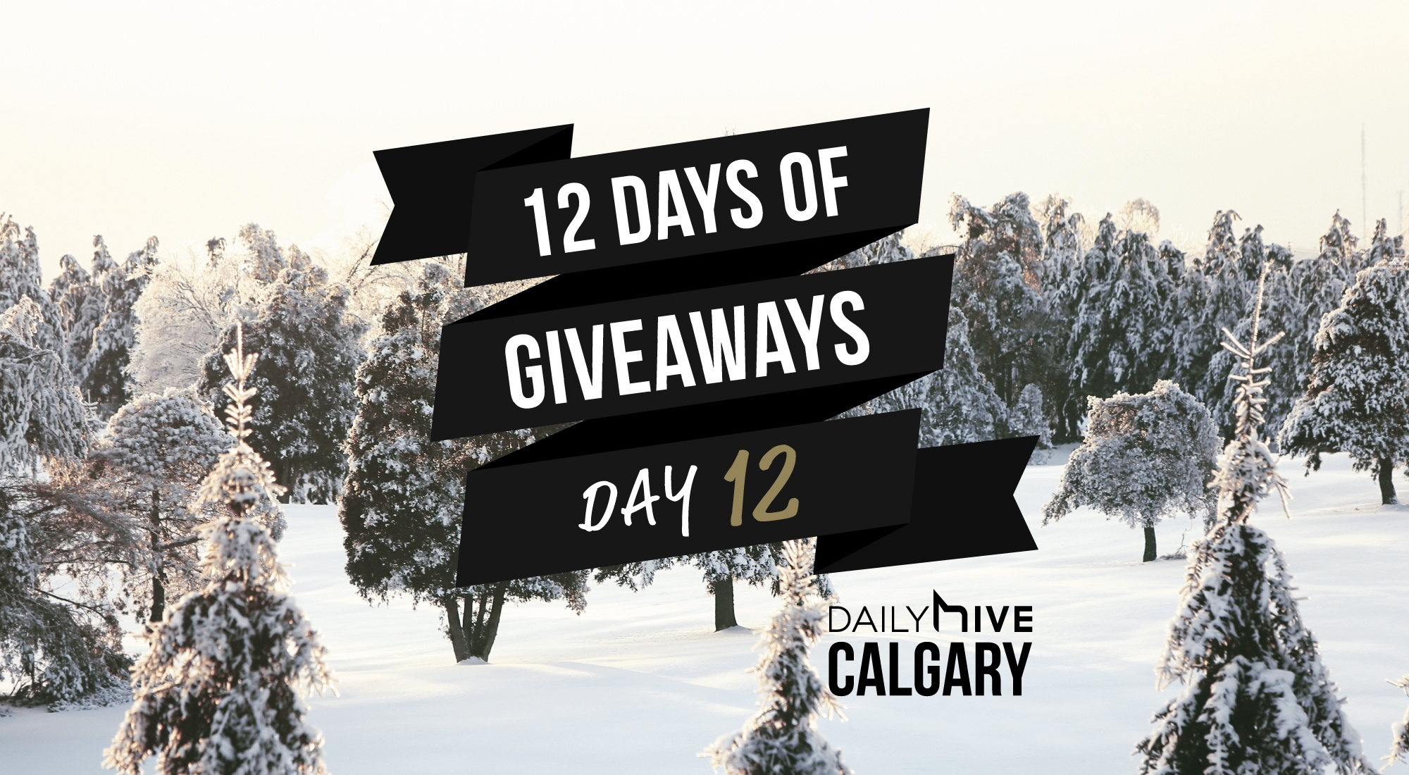 12 days of giveaways calgary 12