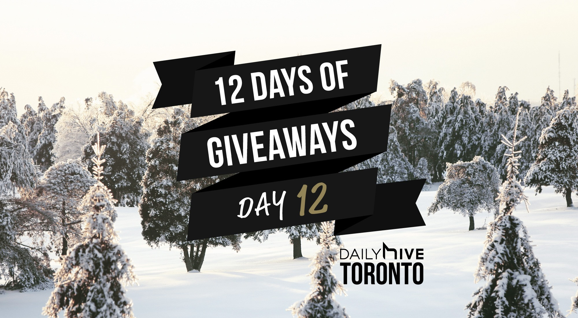 12 days of giveaways toronto 12