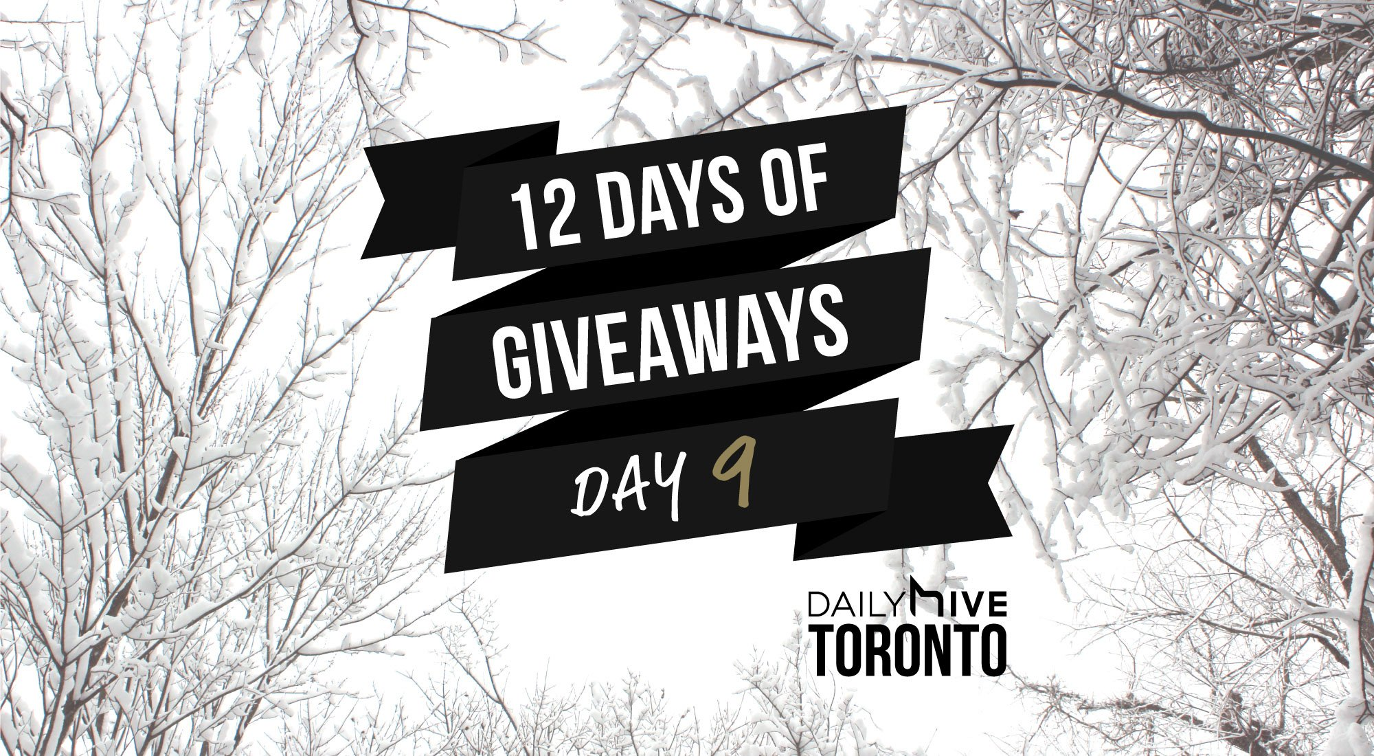 12 days of giveaways toronto 9