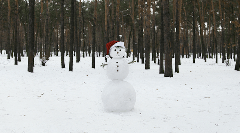 How to build the perfect snowman according to a professional snow sculptor