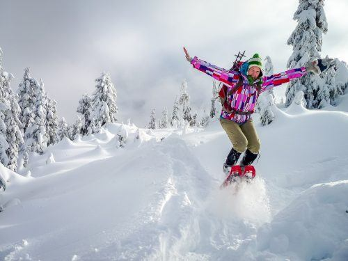 Hollyburn Mountain, courtesy Altitude Blog.