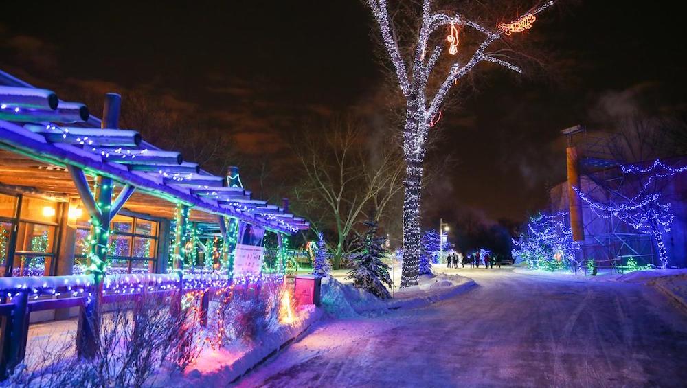 Zoolights returns to Calgary Zoo for 2016 holiday season